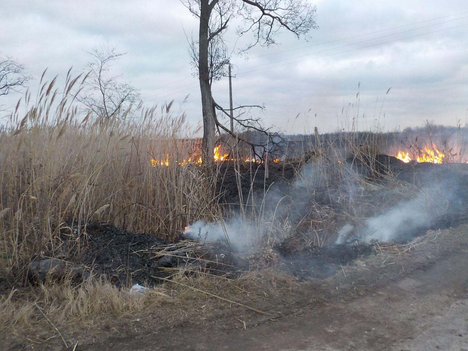 Kigyulladt és mintegy száz négyzetméteres területen égett a száraz nádas  hétfőn délután a 40-es út 26-os kilométerénél ecfe37b6c5